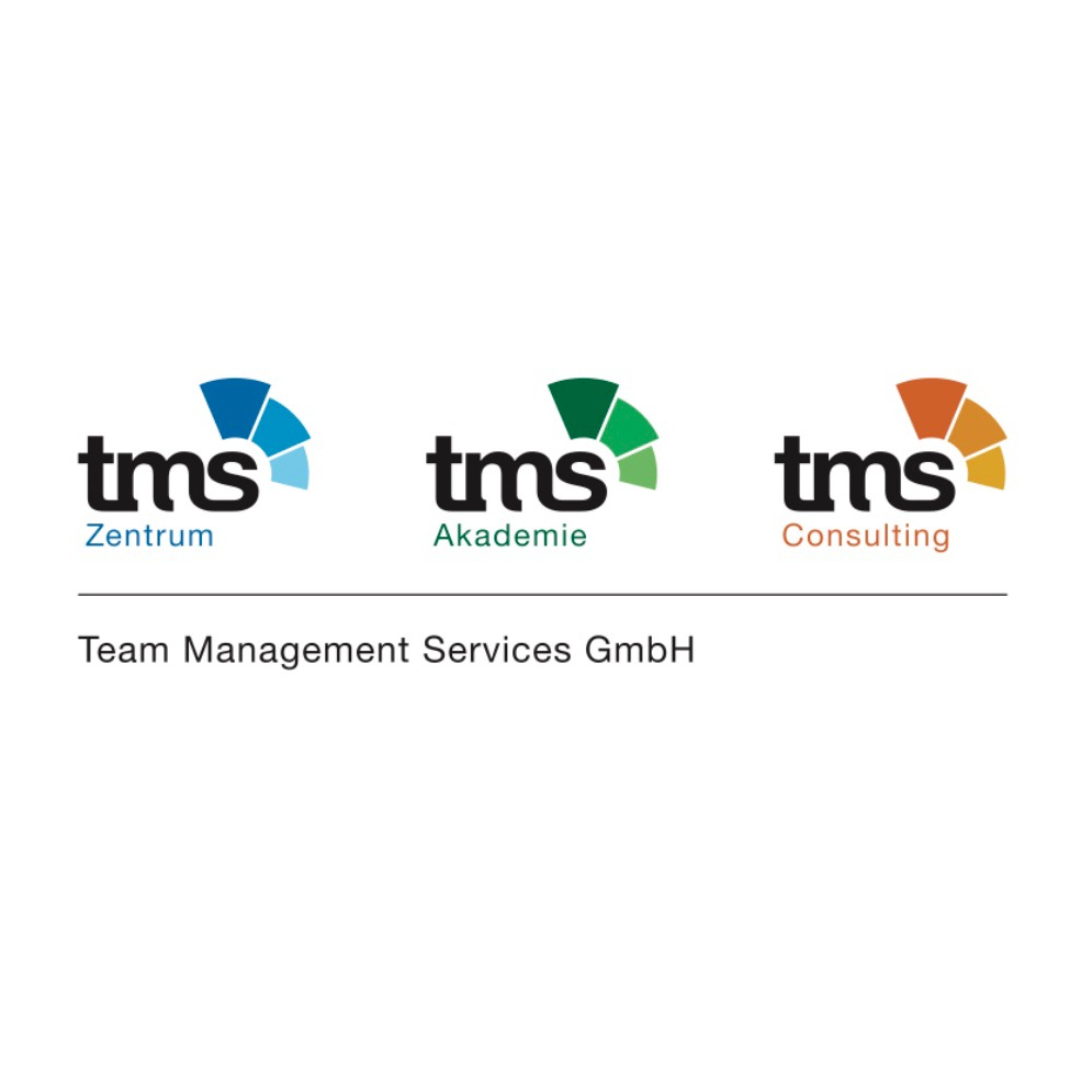 Team Management Services GmbH logo